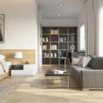 Совмещенные гостиная и спальня: проект комнаты, приемы зонирования и примеры с фото
